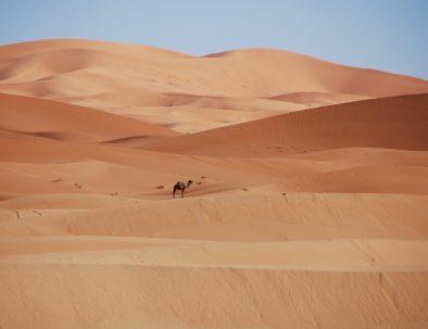10 days tour from Agadir