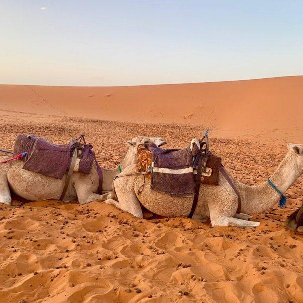 Marrakech to Fes tour in 3 days across Merzouga desert